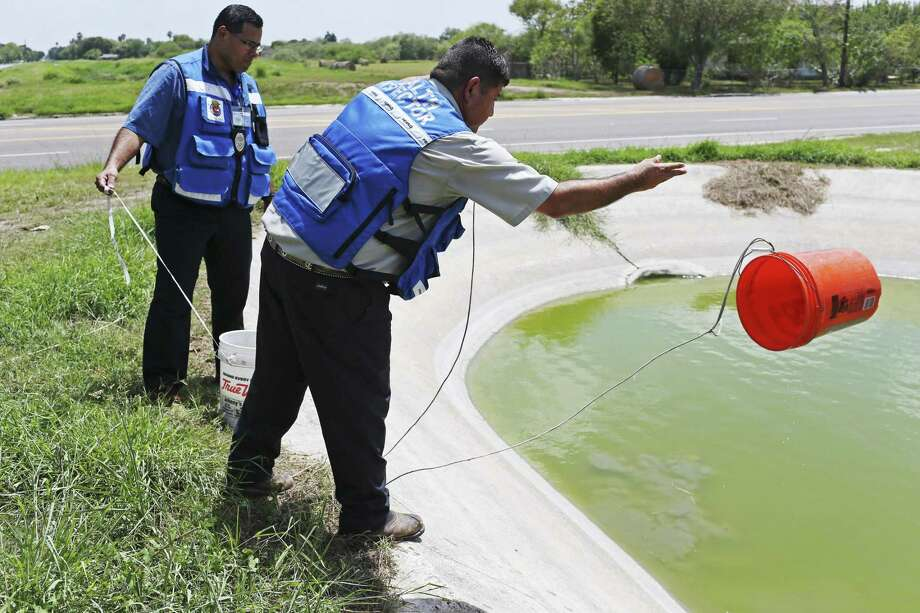 Cameron County Department of Health and Human Services inspectors Martin Montemayor, Jr., right, and Rene Martinez gather drainage water for use in mosquito traps set around the county, Wednesday, Sept. 7, 2016. The traps are collected the next day and samples gathered are sent to the Centers for Disease Control and Prevention Austin office for identification. The Zika virus has not been detected in the Rio Grande Valley mosquito population. The dengue virus, which is carried by the same mosquito as Zika, has been detected in the Rio Grande Valley in past years. Photo: JERRY LARA, Staff / San Antonio Express-News / © 2016 San Antonio Express-News