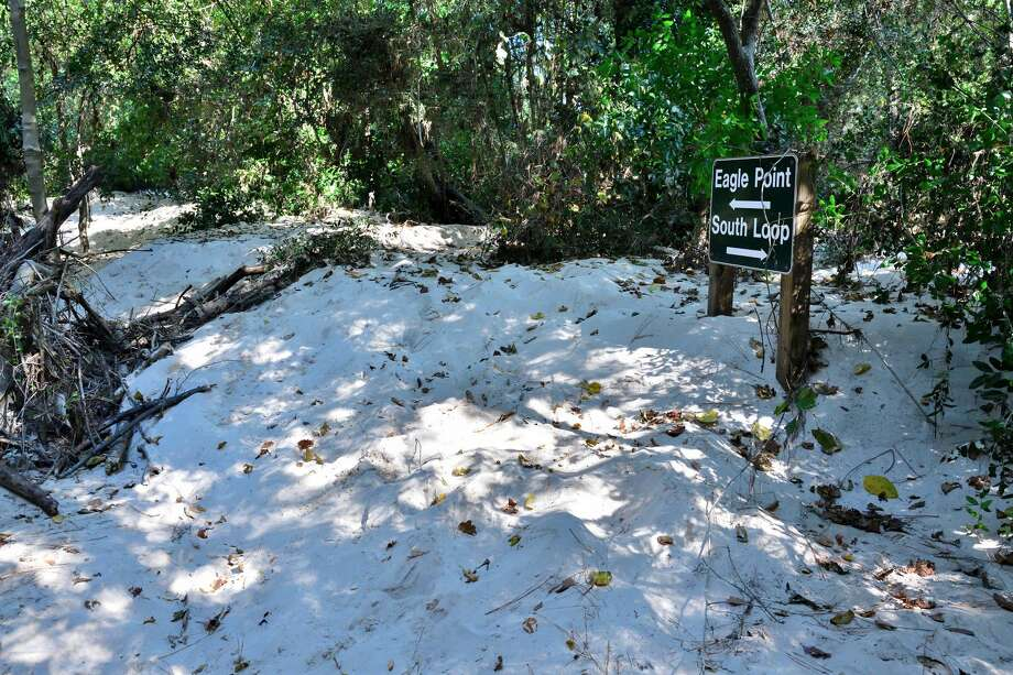 Harvey washed sand downstream from mines in Porter in Montgomery County. After the storm, new dunes up to ten feet high covered 30 acres of Kingwood's East End Park on the East fork of the San Jacinto River and obliterated trails like this one. Photo: Bob Rehak