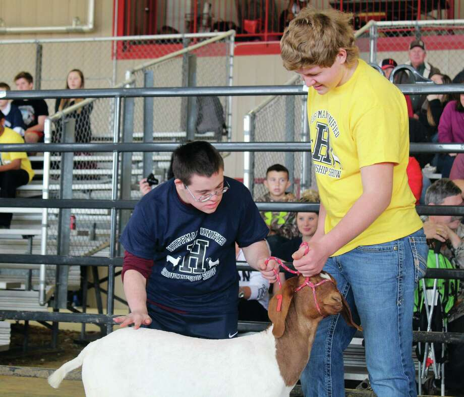 Hangrave High School students who are in the Future Farmers of America organization spent weeks with the special education students on how to take care of goats and lambs to present at the annual Unified Show. Photo: Kaila Contreras