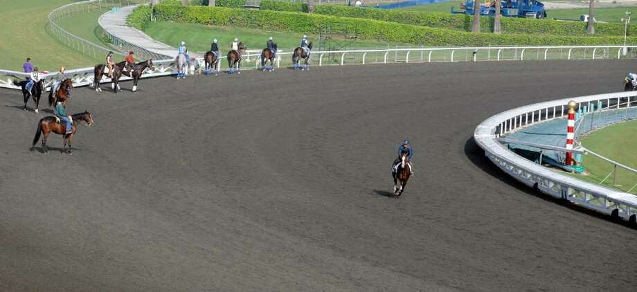 The main track at Santa Anita Race Track, the home of the 2009 Breeders' Cup,  to be run Friday and Saturday, November 6-7, 2009, in Arcadia, Calif., is made up of the Pro Ride synthetic surface rather than a traditional dirt mixture.     (Skip Dickstein / Times Union) Photo: SKIP DICKSTEIN / 2008