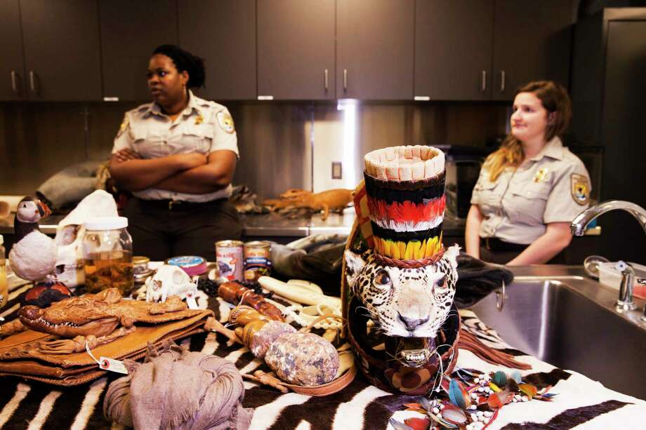 U.S. Fish and Wildlife Service inspector Naimah Aziz, left, and Sara Greenwood search luggage and mail for animals that are protected or arrive in the United States without proper permits. The agency fills a room at its New York office near John F. Kennedy International Airport with illegal finds, which it uses for training and educational purposes. Photo: Photo By Jesse Dittmar For The Washington Post. / For The Washington Post
