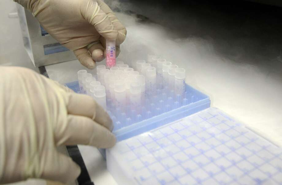 Liquid nitrogen is used to cool live cancer cells before they are removed for experimentation at the San Antonio Cancer Therapy and Research Center in 2015. The UT Health San Antonio component will now be called the Mays Cancer Center to recognize a combined $30 million in gifts by the Mays Family Foundation. Photo: Tom Reel /San Antonio Express-News