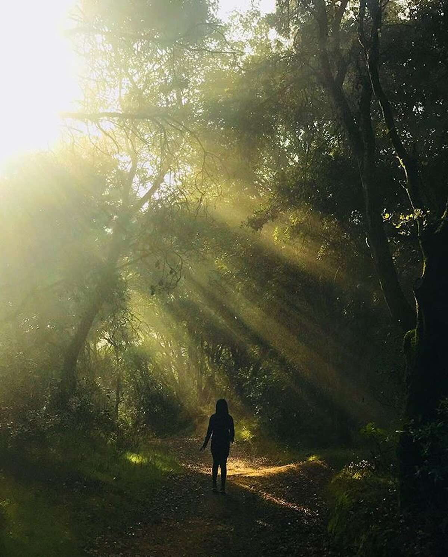 @s_silhouette takes a walk through Joaquin Miller Park.