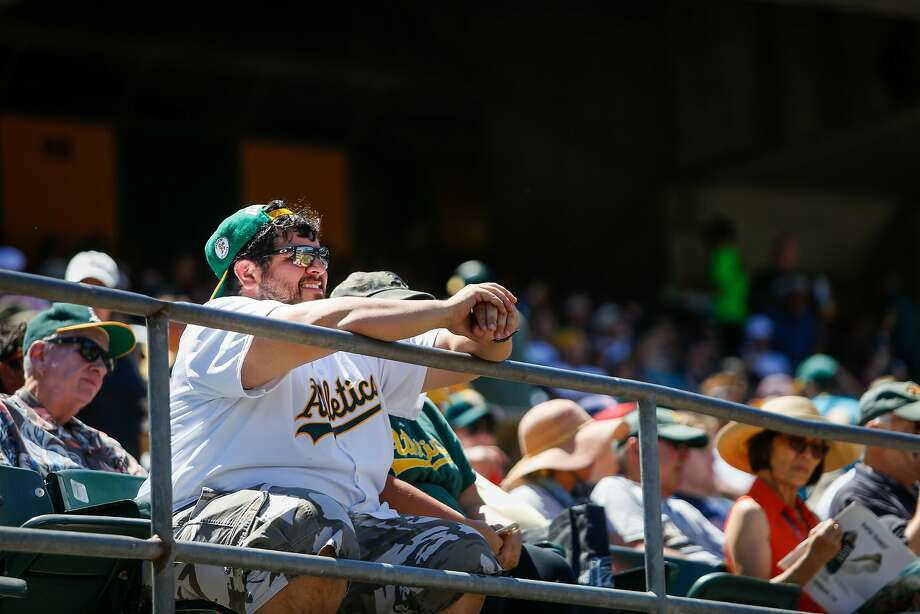 A fan watches the Oakland Athletics against the Cleveland Indians at the Oakland Alameda Coliseum in Oakland on Sunday, July 16, 2017. The Athletics won 7 to 3. Photo: Nicole Boliaux, The Chronicle