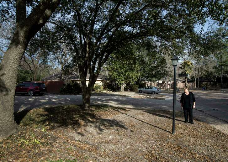 Trish Hagner, who incurred a $1,000 water bill after rescue equipment broke her water meter during Hurricane Harvey, looks over her yard as she sweeps up fallen leaves, Tuesday, Jan. 30, 2018, in Houston. Ruts in her yard, from the equipment, are still visible five months after the storm.  ( Jon Shapley / Houston Chronicle )