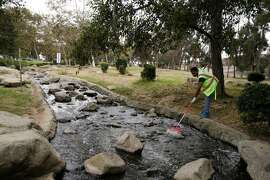 In this Tuesday, Aug. 19, 2014 photo, Jahmal Wilson uses a rake to clean the creek that runs into a lake at Kenneth Hahn State Recreation Area, part of the much larger proposed site of Baldwin Hills Park in the Baldwin Hills section of Los Angeles. he former oil-drilling patch of rolling hills sits along a flood-control channel, but it doesn't provide a drinking water source nor is it part of Southern California�s water-delivery system. Even so, the Baldwin Hills Conservancy stands to gain $10 million if voters approve the $7.5 billion water measure that state lawmakers and Gov. Jerry Brown placed on the November ballot in August 2014 amid the state's historic drought. (AP Photo/Jae C. Hong)