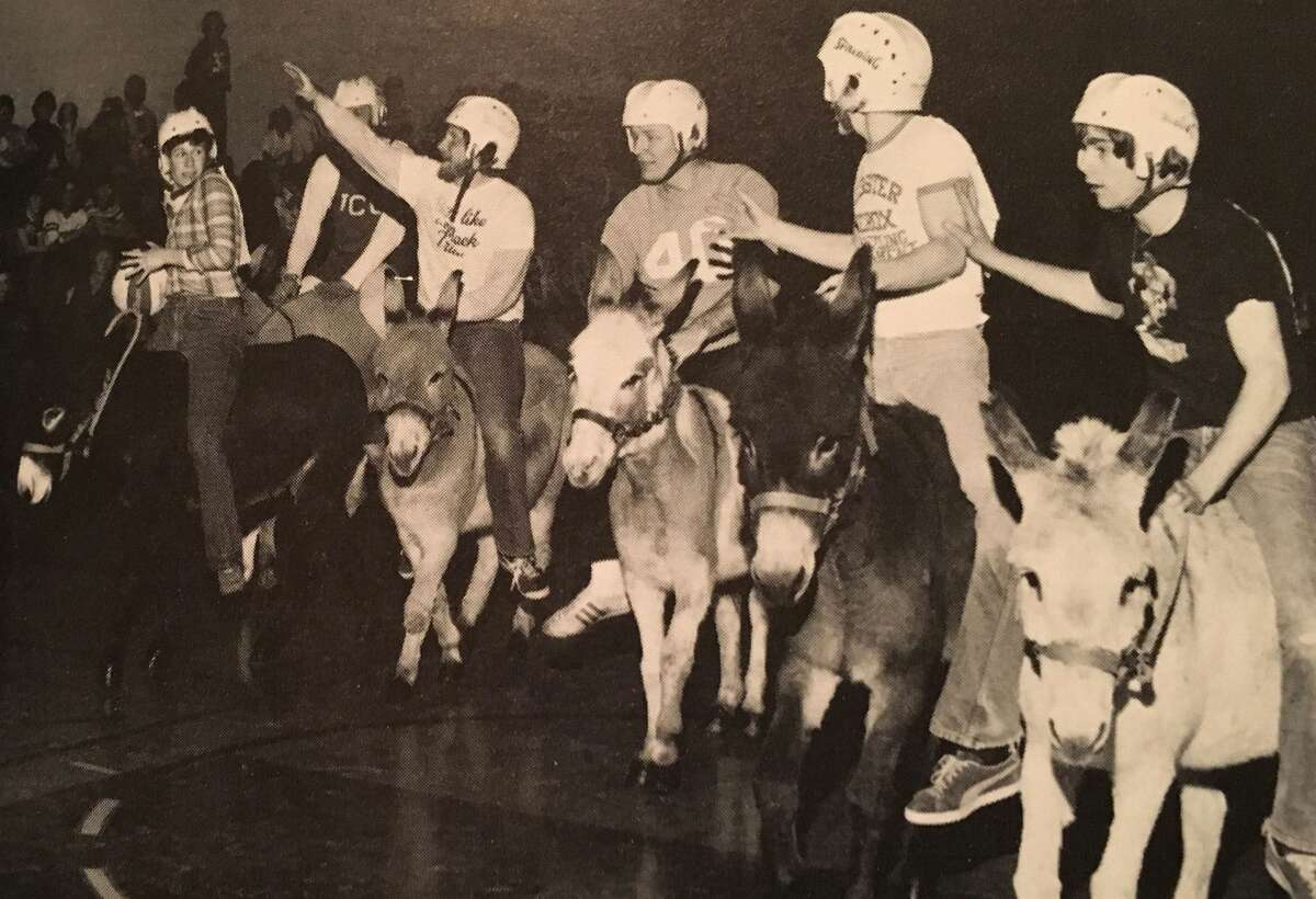 Play donkey basketball...yes, it was a thing.