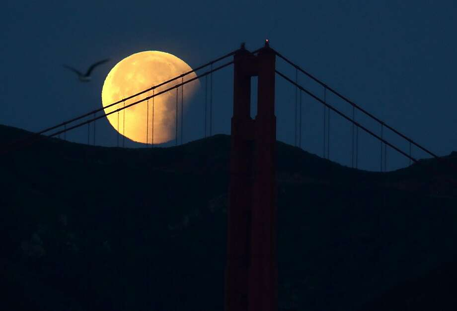 A partially eclipsed super blue blood moon behind the Golden Gate Bridge. Photo: Justin Sullivan