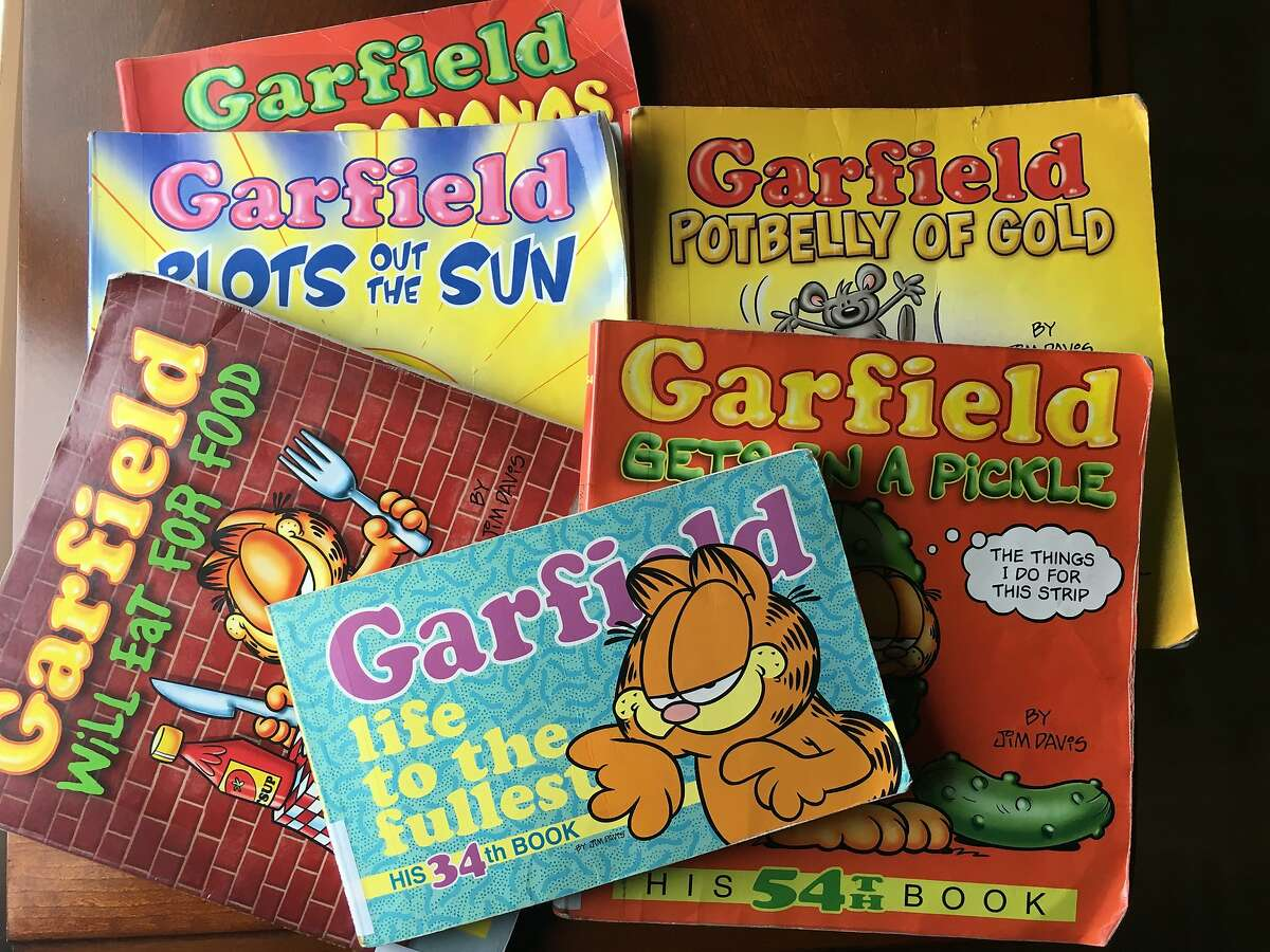 Garfield books from the public library.