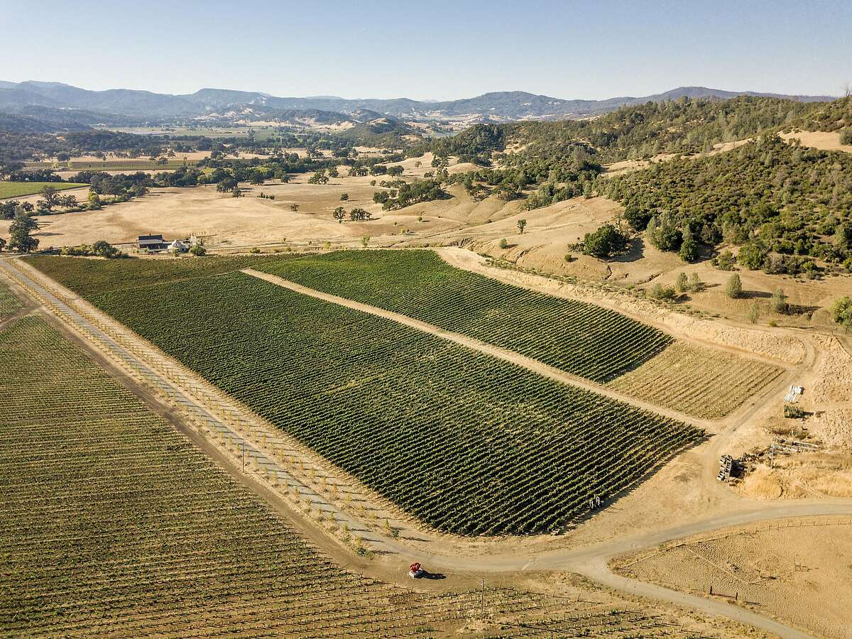 Hine Ranch in Pope Valley, owned by Xavier Cervantes, is lined with vineyards.