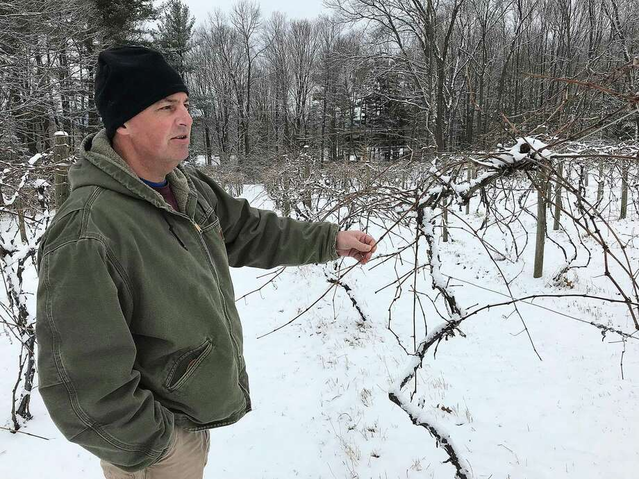Mark Langford, business manager of DiGrazia Vineyards, stands at the edge of the winery's onsite vineyard in Brookfield, Conn., on Tuesday, Jan. 30, 2018. DeGrazia Vineyards is converting this area into an organic vineyard. Photo: Chris Bosak / Hearst Connecticut Media / The News-Times