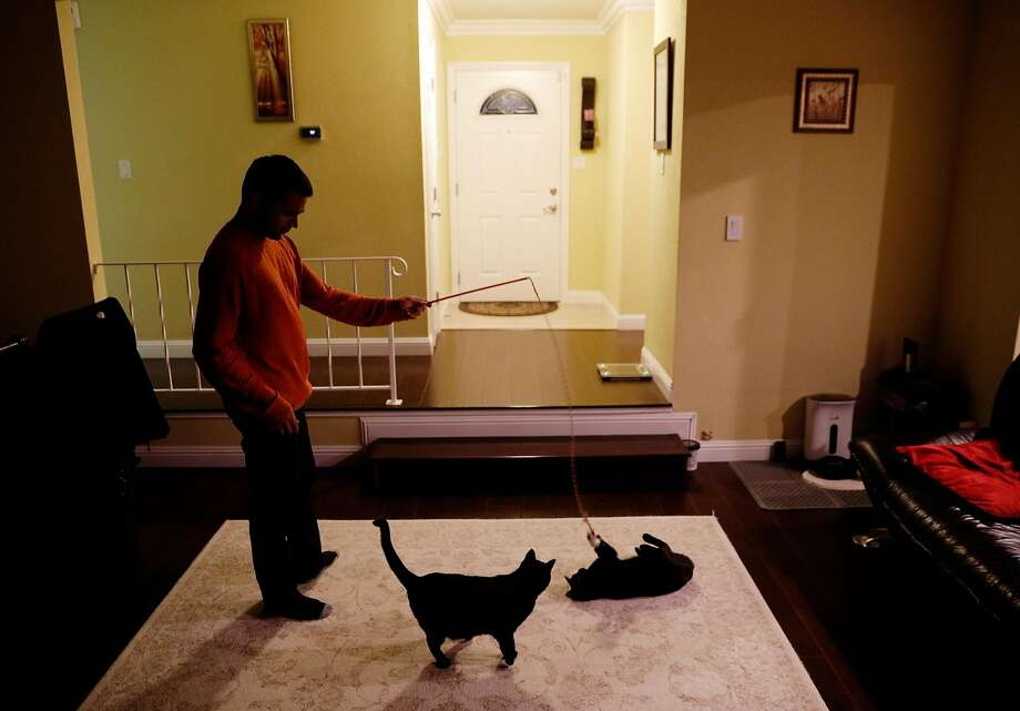 Sudarshan Bhat entertains his two cats, Lulu and Missy, in the home he and his wife, Preethi Rao, share in San Jose. Bhat is still waiting for a green card, but it could take decades at the current rate. Photo: Carlos Avila Gonzalez, The Chronicle