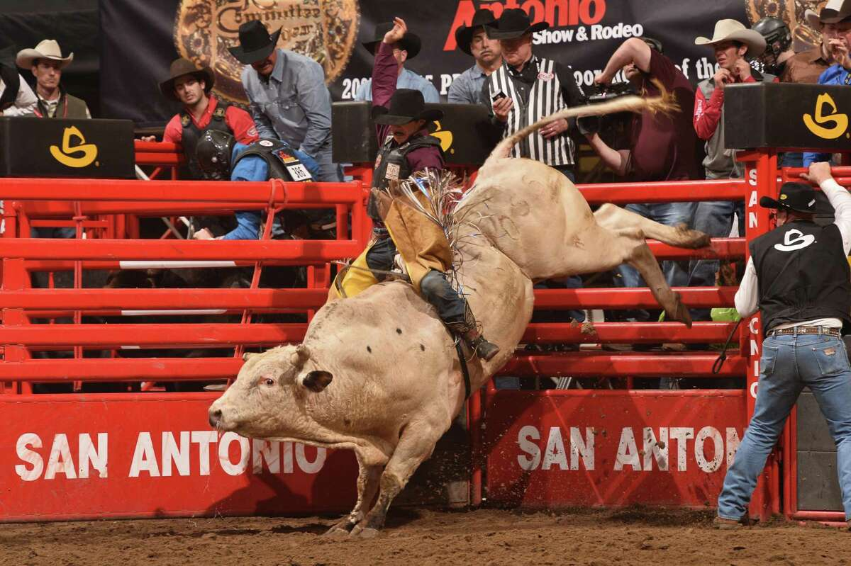Jacob O'Mara hangs on while a bull tries to shake him during the San Antonio Stock Show & Rodeo. And professional cowboys don't get to have all the fun. College teams compete in a good variety of events, too.