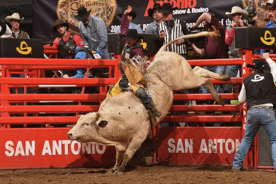 Jacob O'Mara hangs on while a bull tries to shake him during the San Antonio Stock Show & Rodeo. And professional cowboys don't get to have all the fun. College teams compete in a good variety of events, too. Photo: Greg Westfall /San Antonio Stock Show & Rodeo / Westfall PHOTO    2016