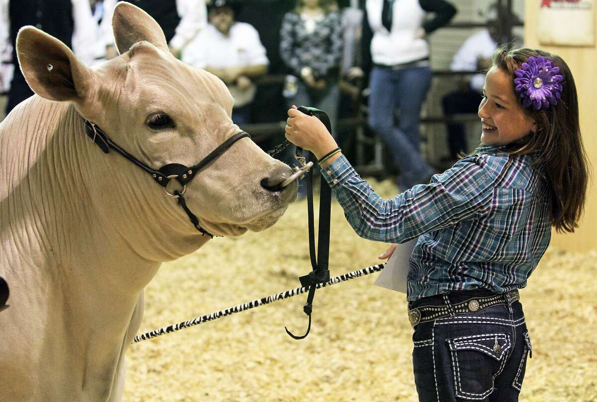 Caeley Jane Cody sells her junior grand champion steer at auction for $112,000 at the San Antonio Livestock Show & Rodeo on February 25, 2012.