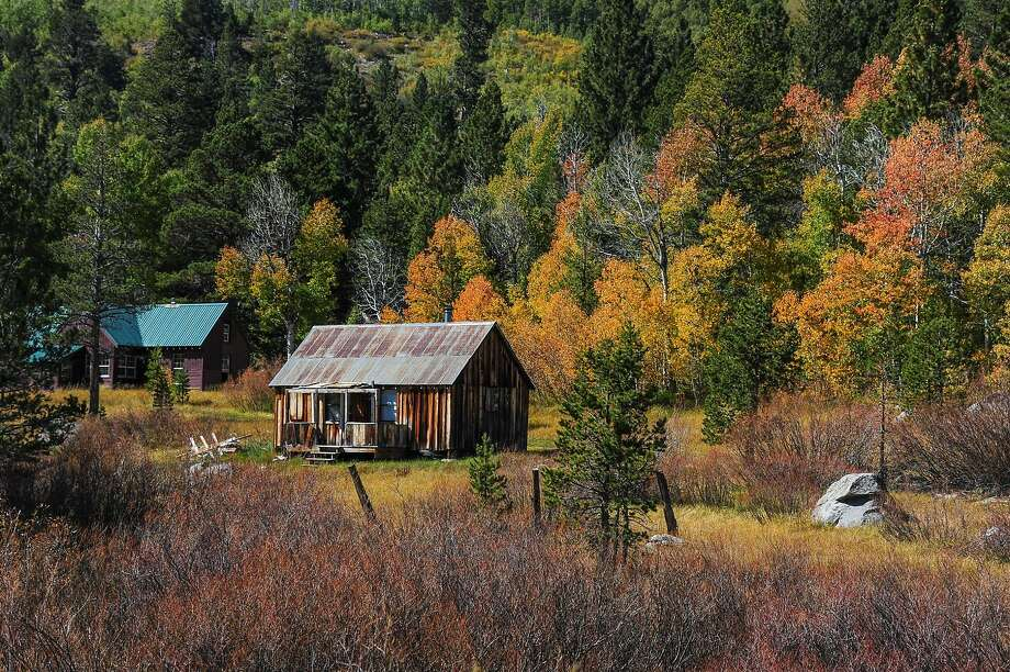Red Creek Cabin, Hope Valley Photo: John Poimiroo