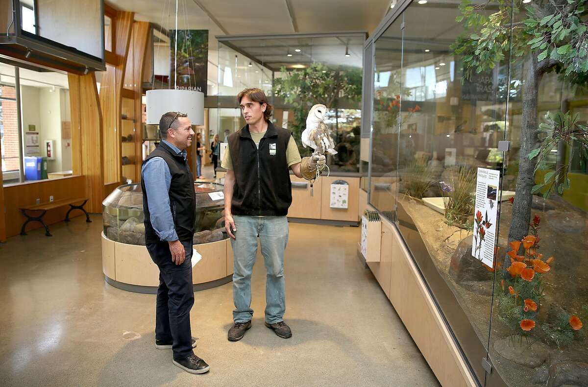 Animal keeper Dominik Mosur (middle) shows an owl to Phil Ginsberg (left), director of the Rec and Park visiting the Wild in California animal exhibit at Randall Museum on Tuesday, February 6, 2018, in San Francisco, Ca.
