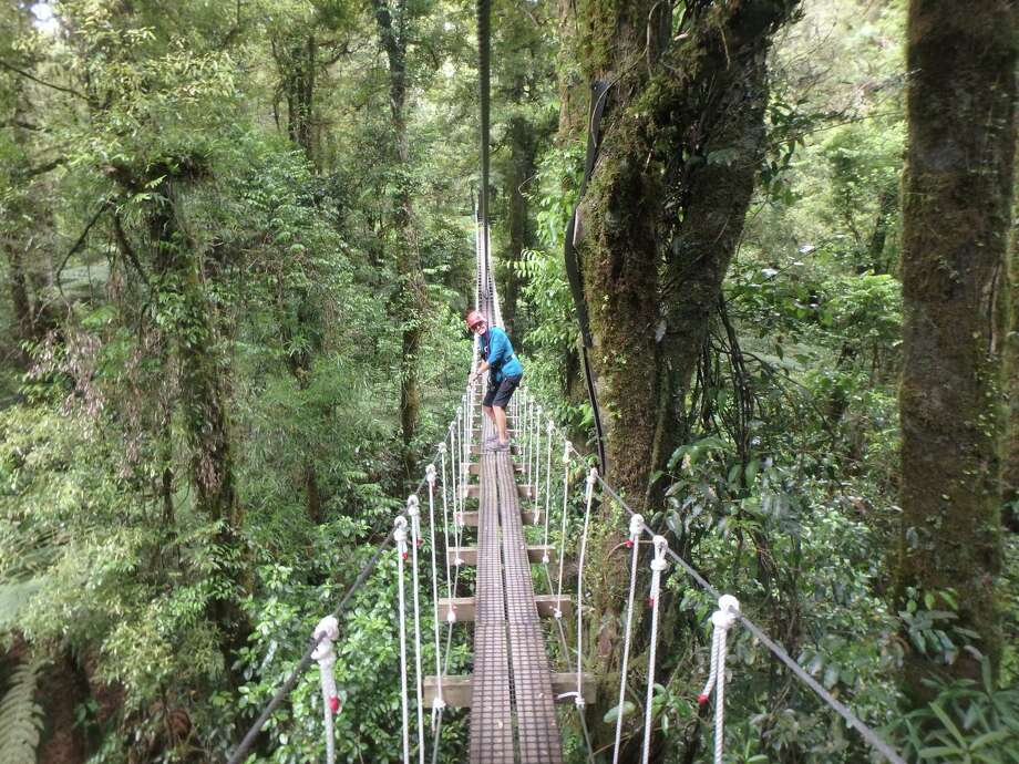 A visitor navigates a suspension bridge on the Rotorua Canopy Tours adventure in New Zealand. Photo: M.L. Lyke. / The Washington Post