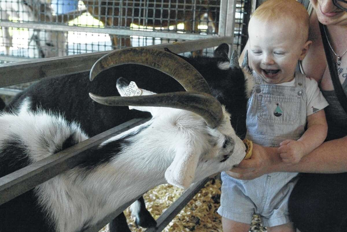 Eleven-month-old Logan Jensen, son of Beverly and Joseph Jensen of Jacksonville, helps his mom feed an ice cream cone to an African pygmy goat Thursday at the Jungle Safari in front of Pathway Services on West Morton Avenue. Jungle Safari, based in Trenton, Florida, partnered with Pathway to bring 23 animals, including monkeys, a camel and a white Bengal tiger, to Jacksonville. The free zoo is open from 10 a.m. to 9 p.m. today and Saturday and from 11 a.m. to 5 p.m. Sunday.