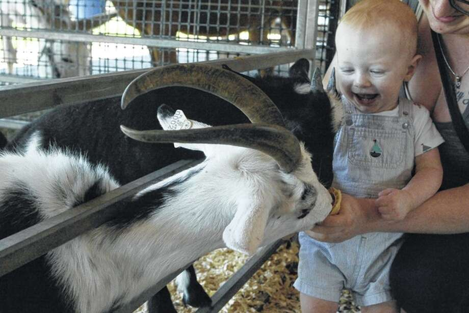 Eleven-month-old Logan Jensen, son of Beverly and Joseph Jensen of Jacksonville, helps his mom feed an ice cream cone to an African pygmy goat Thursday at the Jungle Safari in front of Pathway Services on West Morton Avenue. Jungle Safari, based in Trenton, Florida, partnered with Pathway to bring 23 animals, including monkeys, a camel and a white Bengal tiger, to Jacksonville. The free zoo is open from 10 a.m. to 9 p.m. today and Saturday and from 11 a.m. to 5 p.m. Sunday. Photo: Greg Olson | Journal-Courier