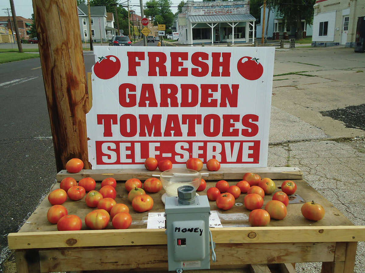Jeannie Hemphill   Reader photo A budding entrepreneur set up a self-serve stand on East State Street in Jacksonville to get a little extra money from a bumper crop of tomatoes.