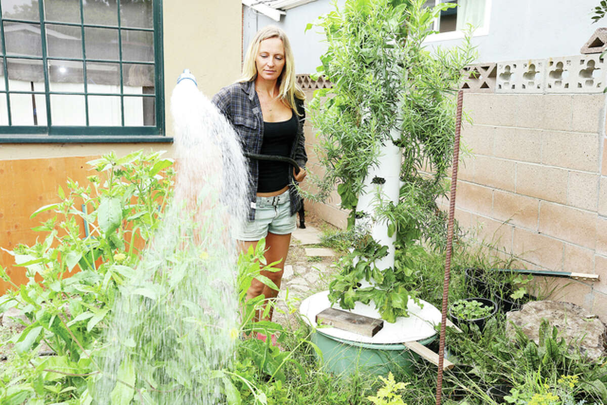 Gardener Courtney Guerra waters the grounds of a garden used by Ari Taymor of Alma restaurant in Los Angeles. Some chefs have dedicated gardens for the produce they use in their restaurants.