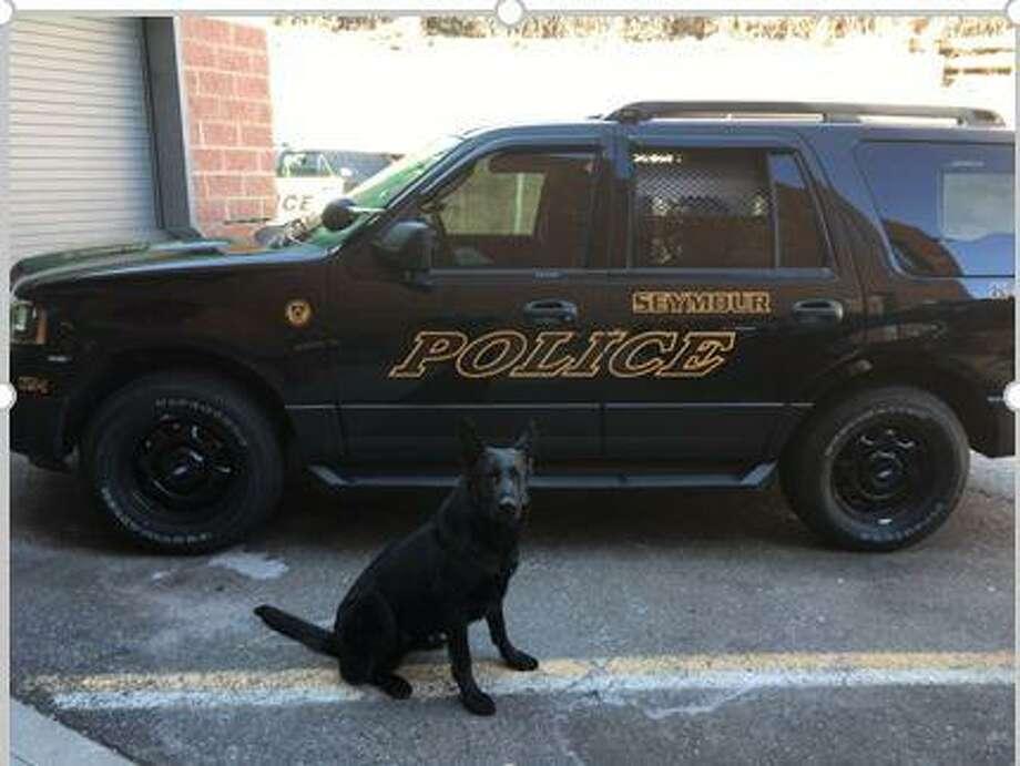 Zoar, Seymour Police Department's K9 Photo: Courtesy Of Seymour Police Department K9 Units