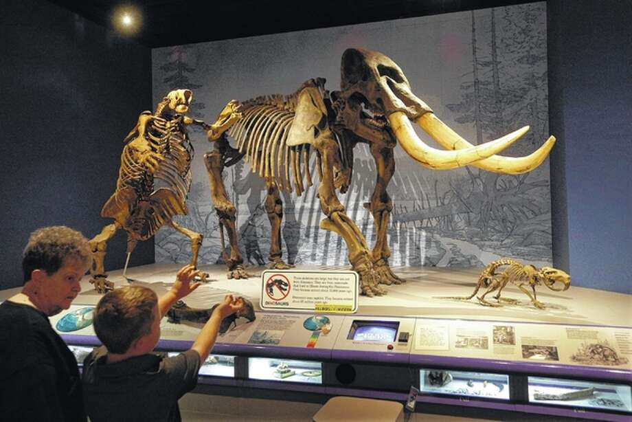 Lucille Drone and her grandson, Riley Alley, 9, from Seattle, talk about the giant American Mastodon, right, and Ground Sloth, left, while visiting the Illinois State Museum on Aug. 24 in Springfield, Ill. The 138-year-old museum could be the next casualty in an ugly state budget battle that has dragged on for months. Republican Gov. Bruce Rauner is targeting the museum and four satellite sites for closure, the latest in a series of cuts the former businessman says are needed to manage Illinois' finances as he battles with Democrats who run the Legislature.