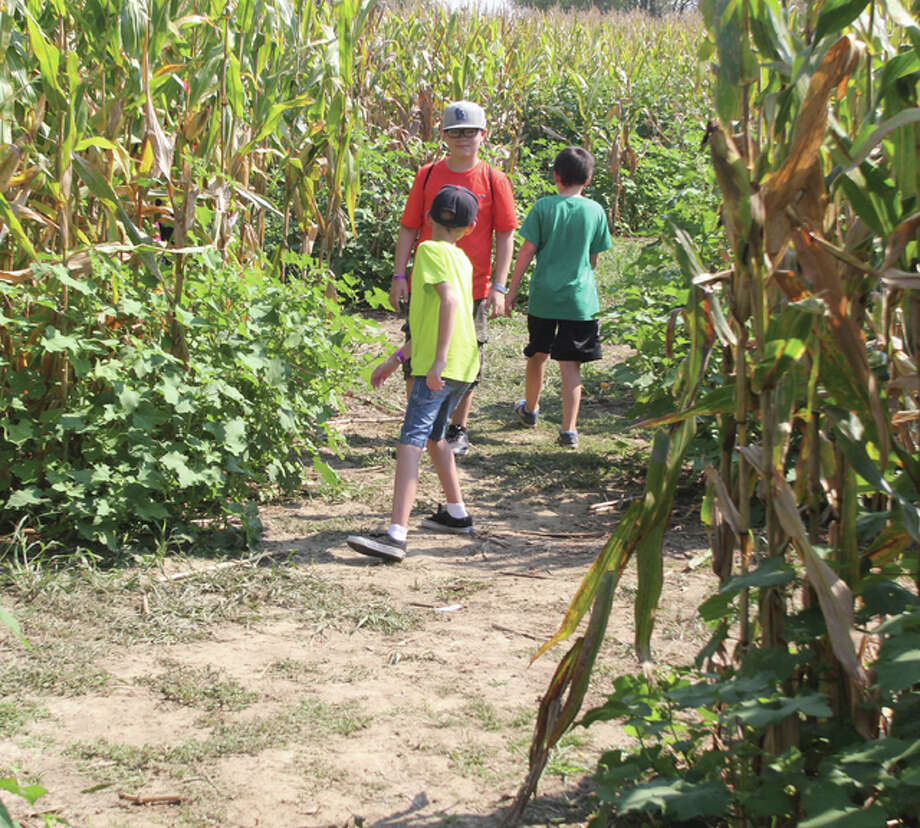 Ethan Pearson, left, 10, Jacob Long, 12 and Chris Long Jr., 11, all of Collinsville, try to figure out which direction to take in the Great Godfrey Maze Saturday. The seven-acre corn maze opened Labor Day Weekend and will run through Oct. 31.
