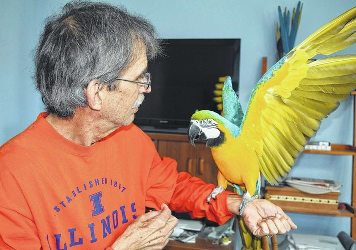 """Steve Miller holds Sam the macaw as the bird performs its """"big wings"""" trick."""