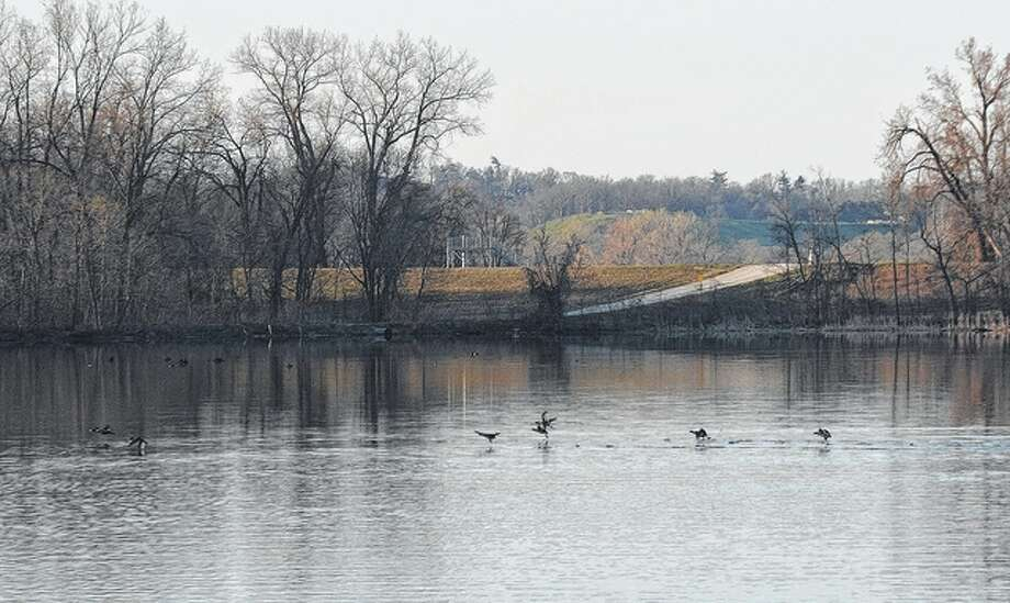 Birds skip along the water in Pike County.