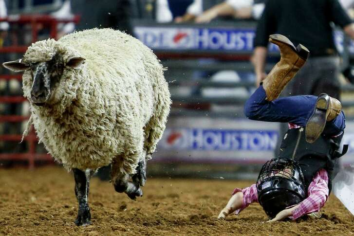 A Mutton Busters hits the dirt after an unsuccessful ride during round two of Super Series V at the Houston Livestock Show and Rodeo Monday, March 20, 2017 in Houston. ( Michael Ciaglo / Houston Chronicle )