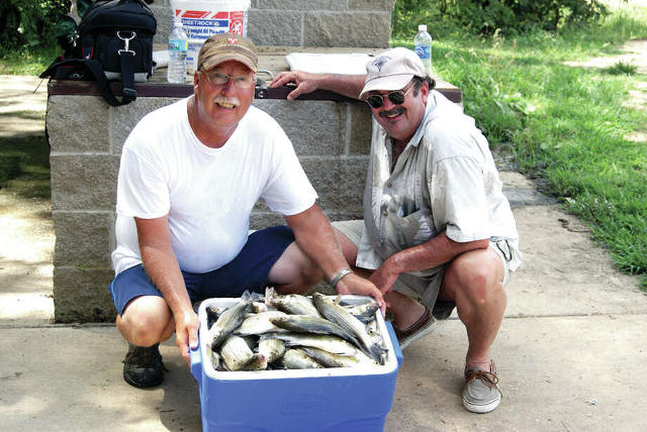 Though slow in getting here, the quality white bass fishing expected at Carlyle Lake is now heating up. And, this same activity at Lake Shelbyville is expected to turn on at anytime.
