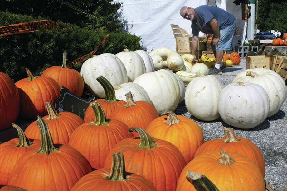 J.J. Genseal of Jacksonville looks over some of the pumpkins he has for sale Wednesday at his produce stand in South Jacksonville. The stand is affiliated with Spears Family Market in Beardstown. Photo: Greg Olson | Journal-Courier
