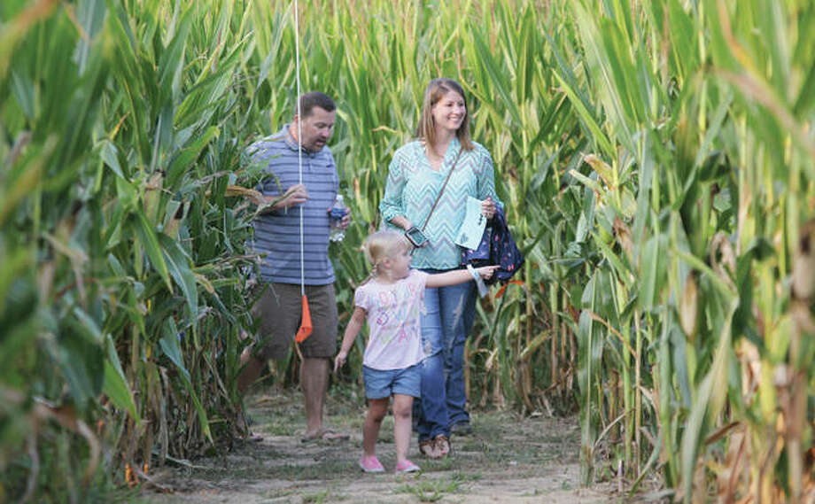 Chris and Amanda Sellers, of Godfrey, take their daughter, Gwen, 4, through the Great Corn Maze in Godfreys Glazebrook Park Friday evening. The annual attraction opened Friday with a ribbon-cutting, costume contest and other activities, and is open Fridays through Sundays through Oct. 29.