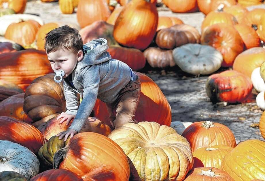 Ryland Schultz, 2, climbs over several pumpkins at Bengtson's Pumpkin Farm in Homer Glen.