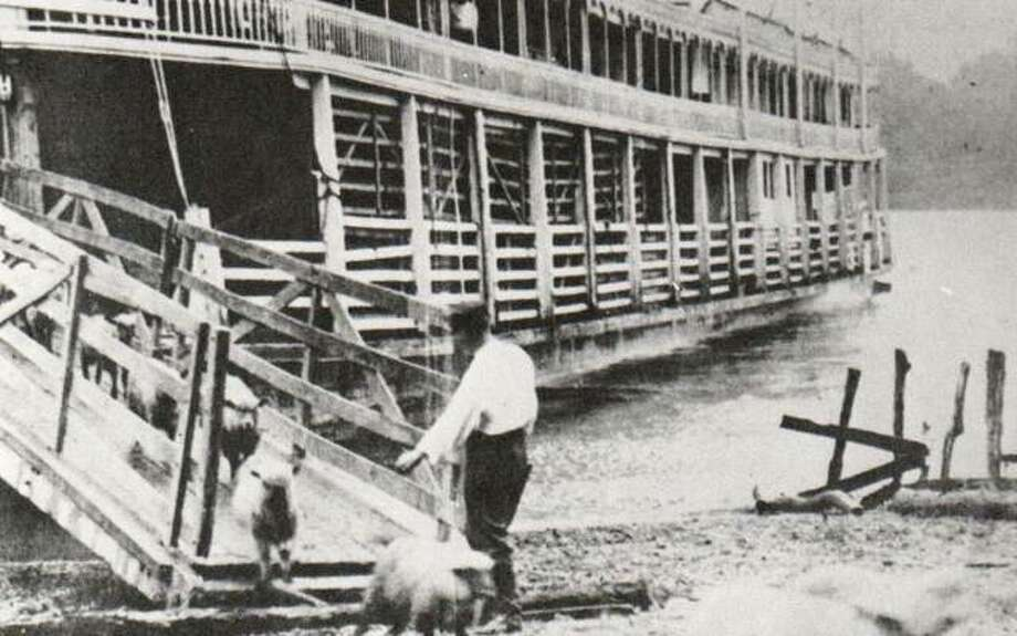 """Passengers watch from the boiler deck as sheep are unloaded from the main deck of the Bald Eagle. The steamer contained cabins for about 80 passengers. The Bald Eagle was a stern-wheeler and could carry 450 tons of freight. In later years, excursion passengers complained about sharing their adventure with livestock, so the packet company revised its schedules to separate the two types of """"cargo""""."""