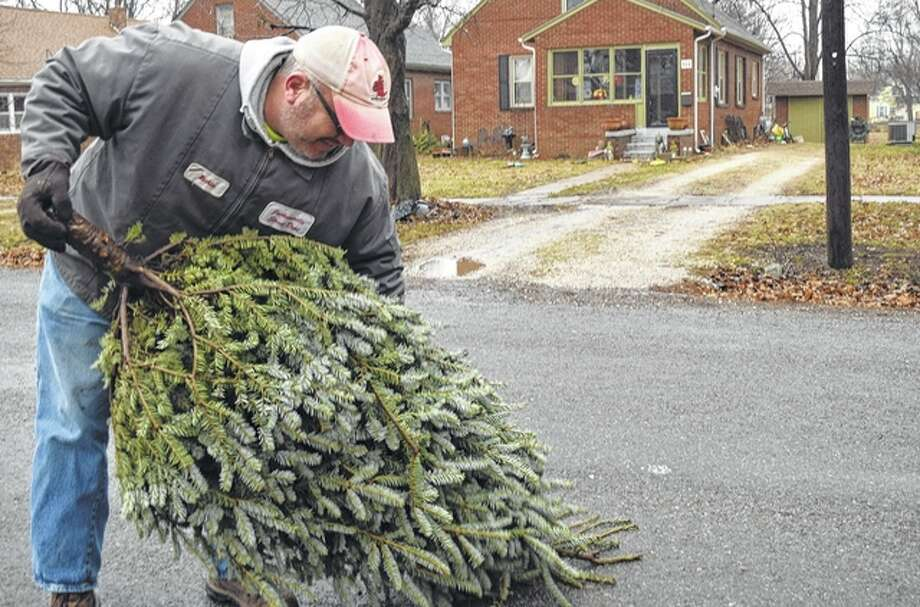 Rich Hymes of the Jacksonville Street Department picks up a Christmas tree Tuesday as part of the city's annual collection of Christmas trees. Trees can still be taken to the street department from 8 a.m. to 4:30 p.m. through Friday for disposal.