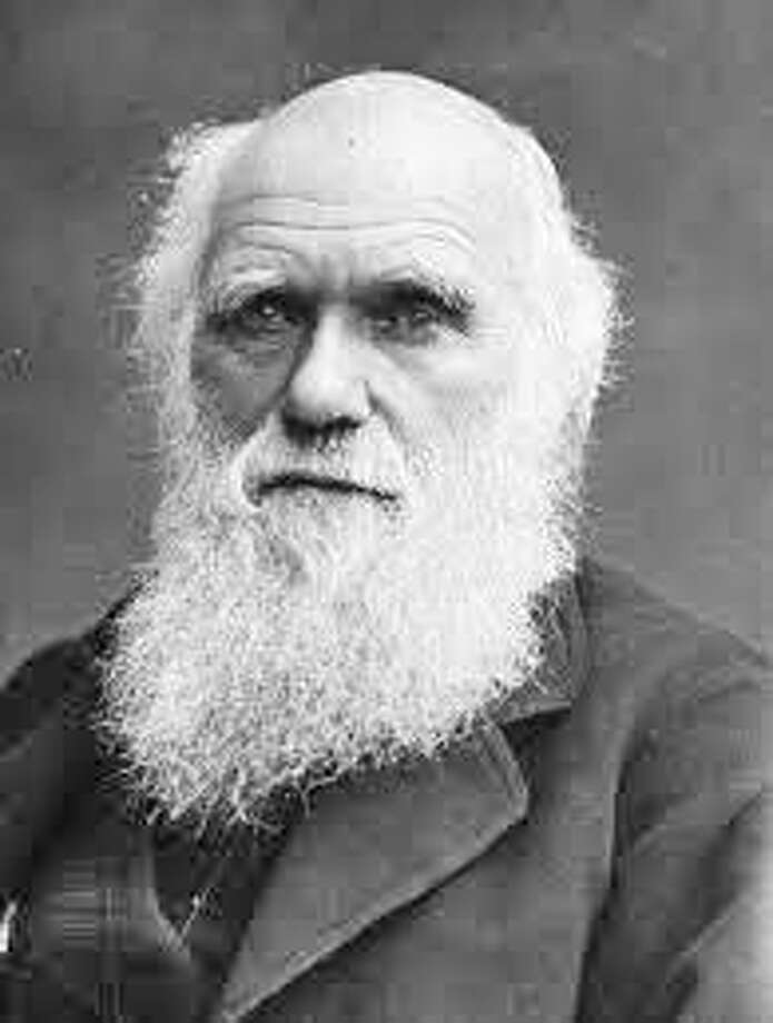 "Charles Darwin authored ""The Origin of Species"" in 1859, which reasoned that random variation, coupled with natural selection, drive evolution. It created tensions that still exist today. Photo: /Fairfield Citizen /Contributed / Fairfield Citizen"