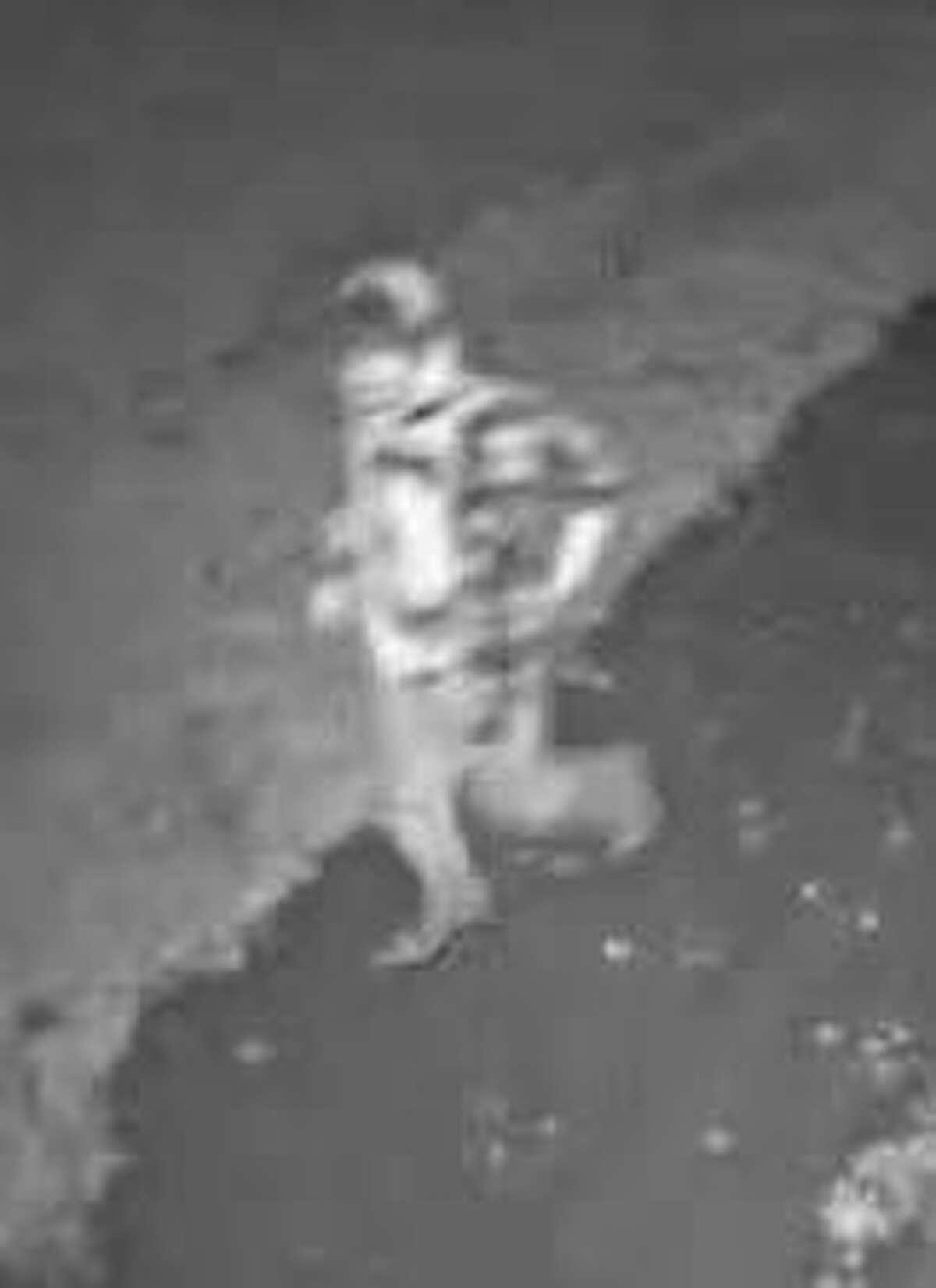 Surveillance photos of the suspected burglar.