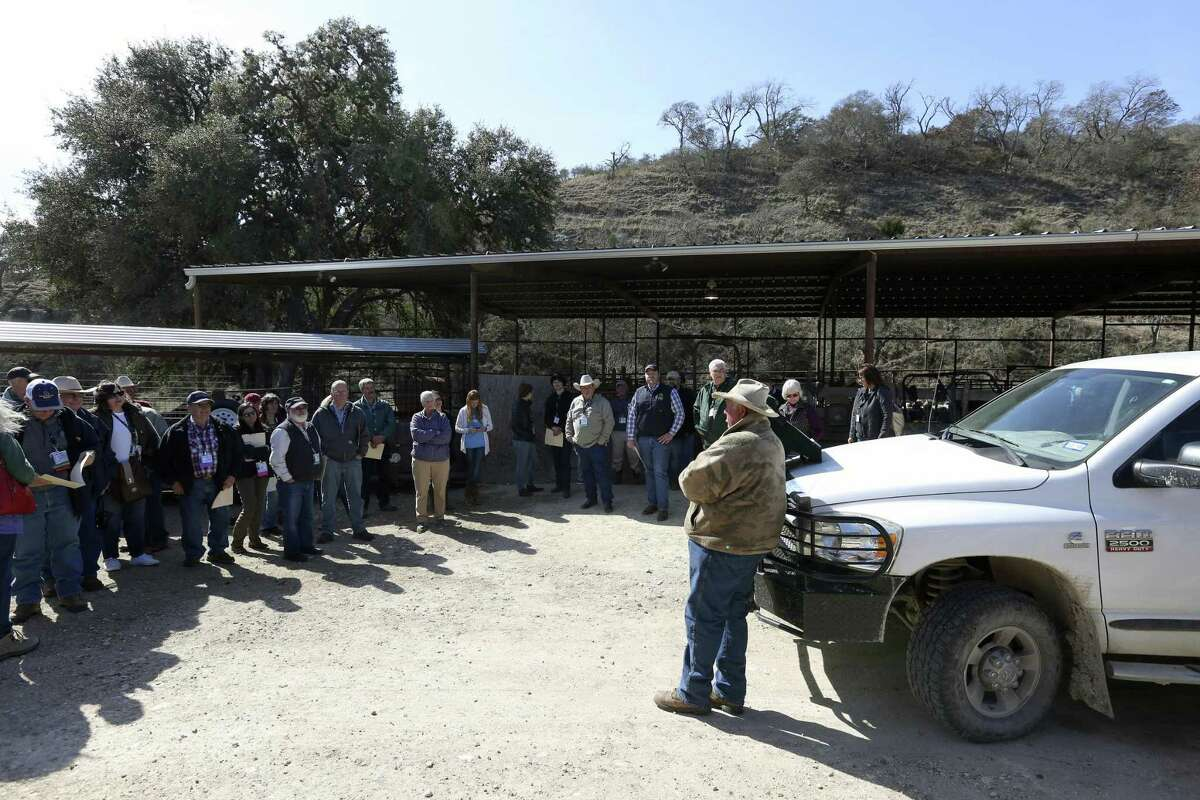 Robin Giles, next to truck, speaks to members of the American Sheep Industry Association on his family's 130-year-old Hillingdon ranch in Kendall County. They toured his sheep and goat facility during the association's convention in San Antonio.