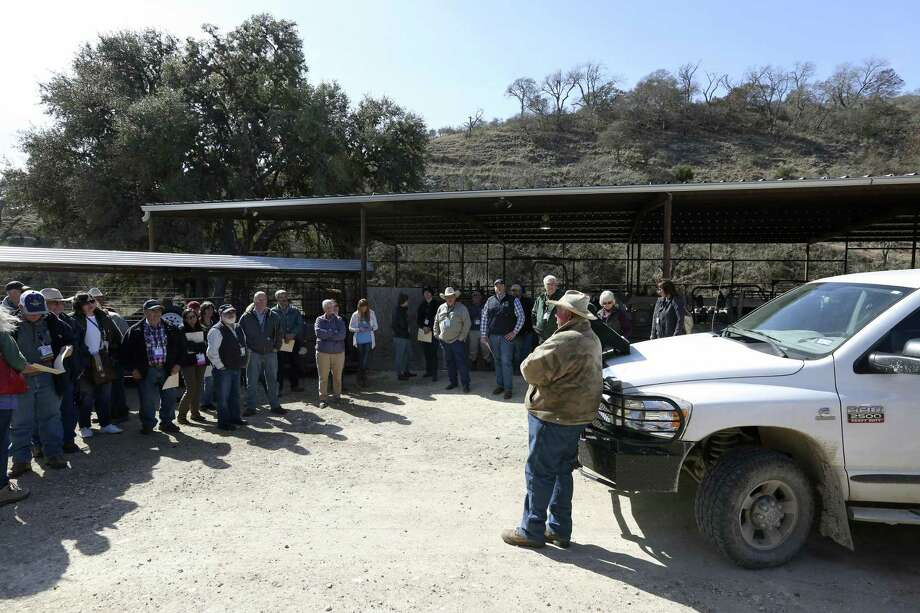 Robin Giles, next to truck, speaks to members of the American Sheep Industry Association on his family's 130-year-old Hillingdon ranch in Kendall County. They toured his sheep and goat facility during the association's convention in San Antonio. Photo: William Luther /San Antonio Express-News / © 2018 San Antonio Express-News
