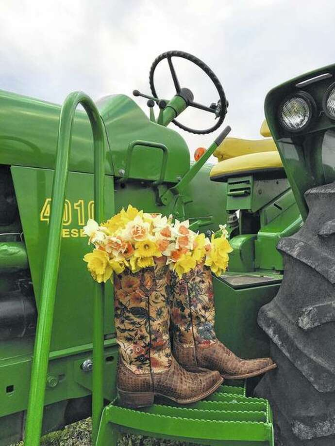 Daffodils sit in boots on a tractor.