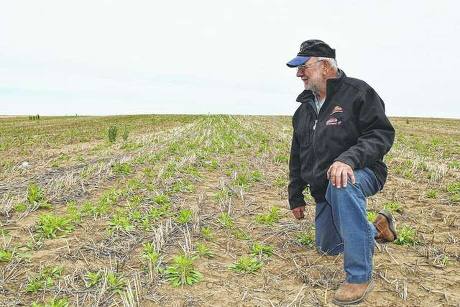 Dean Pfeiffer of rural Bath looks over a field that he will soon plant in popcorn. Pfeiffer has been a Mason County popcorn farmer for about 30 years. Photo: Greg Olson | Journal-Courier