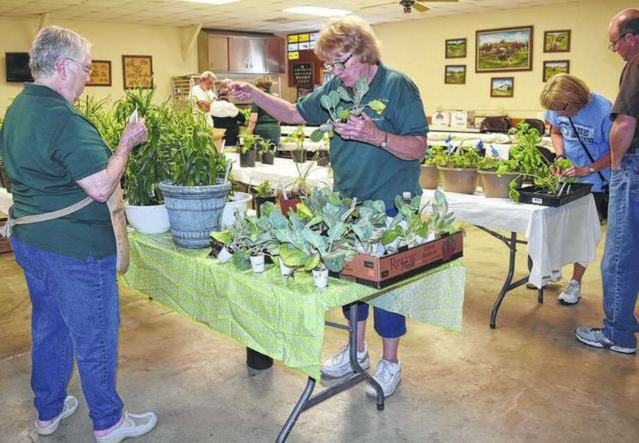 Linda Settles (from left) and Nancy Hamby of the Morgan County Garden Club reorganize plants at the club's sale Tuesday. There will be another sale May 20 from 9 a.m. to noon. Photo: Audrey Clayton | Journal-Courier