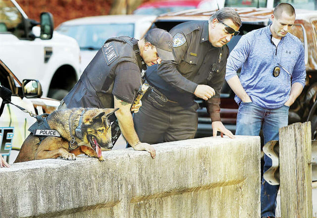 In this Nov. 29, 2017 file photo, three Alton officers and a police K-9 look over the small College Avenue bridge that carries traffic over Rock Spring Creek after a bank robber, who robbed the US Bank at Washington and Brown streets, apparently discarded clothing below as he fled on foot. From the left, police canine Kenzo, Canine officer Michael Morelli, Deputy Police Chief Terry Buhs and Chief of Detectives Jarrett Ford all look down toward the creek while an officer photographs and recovers the clothing items.