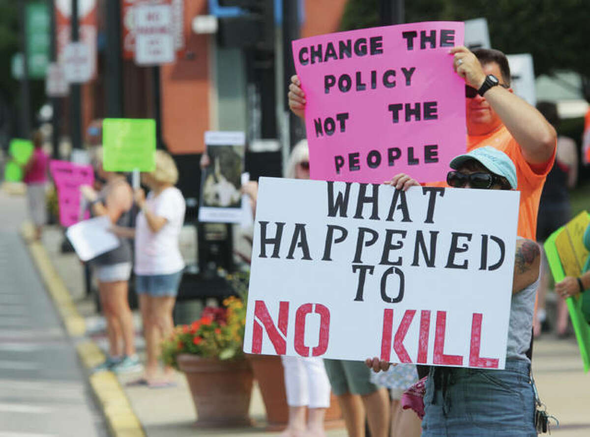 """People show support for a """"no-kill"""" policy at Madison County's Animal Control Department during a protest before a Madison County Board meeting earlier this year."""
