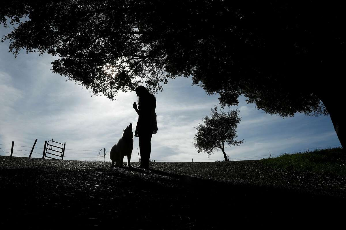 Lynda Deschambault, with her dog Kodiak walking the Mulholland Open Space that she helped to preserve back in the early 2000's, in Moraga, Calif., seen on Friday Feb. 9, 2018. Deschambault, an environmental scientist who worked for 20 years for the EPA, overseeing a Superfund site, when the new administration decided to go