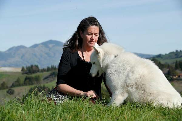 "Lynda Deschambault, with her dog Kodiak visit the Mulholland Open Space that she helped to preserve back in the early 2000's, in Moraga, Calif., seen on Friday Feb. 9, 2018. Deschambault, an environmental scientist who worked for 20 years for the EPA, overseeing a Superfund site, when the new administration decided to go ""lean"" and cut her regulatory authority."
