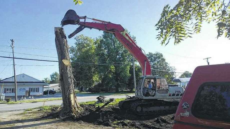 A piece of heavy machinery prepares to bite down on a tree on Cherry Street in Winchester. The work is being done to clear the way for a housing project. Photo: Jerry Stocker | Reader Photo